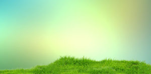 banners-2